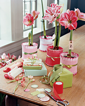 Flower Pot Gift Wrap