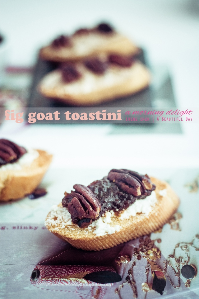 Fig Goat Toastini