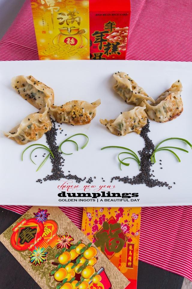 Jiaozi Dumplings