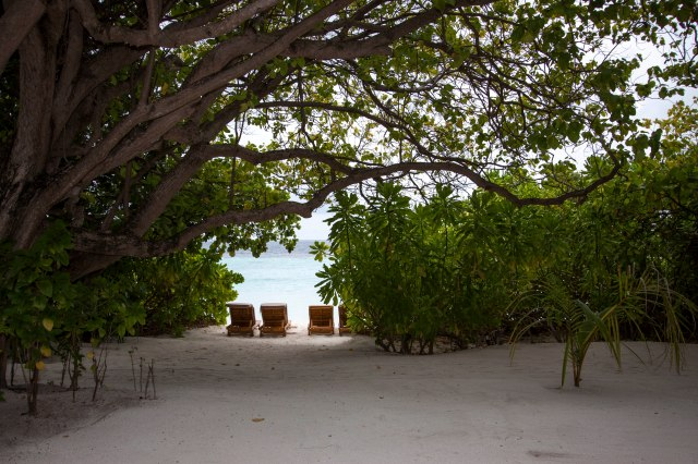 Maldives_144