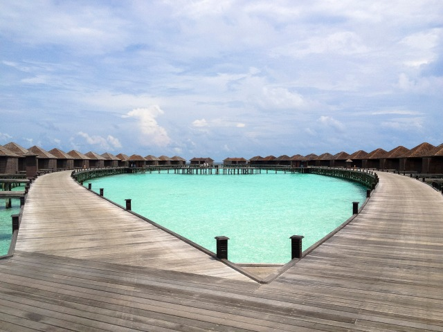 Maldives_298
