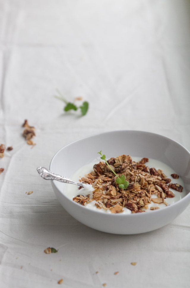 Chocolate Chip Fig Granola-27