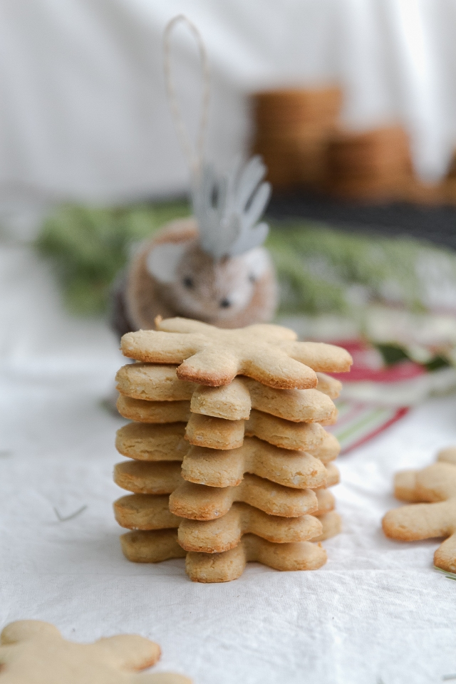 Protein Rich Holiday Cookies-1